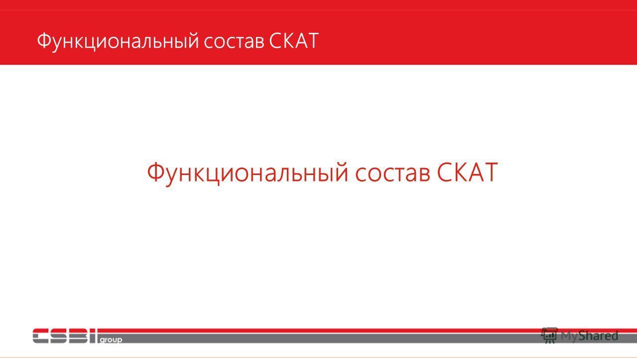 Функциональный состав СКАТ