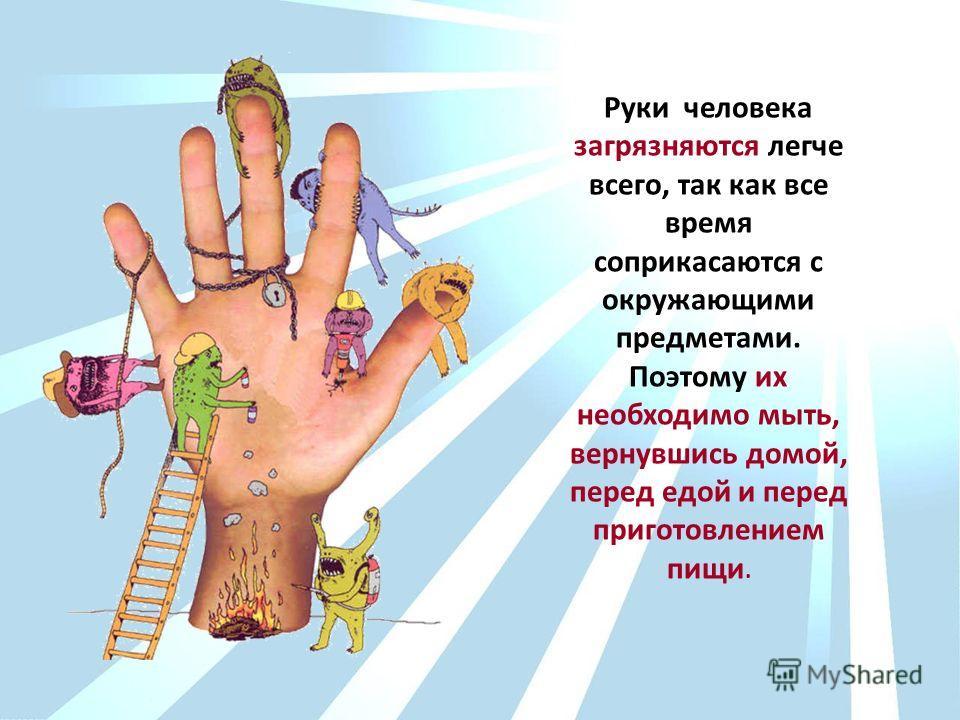 Руки человека загрязняются легче всего, так как все время соприкасаются с окружающими предметами. Поэтому их необходимо мыть, вернувшись домой, перед едой и перед приготовлением пищи.