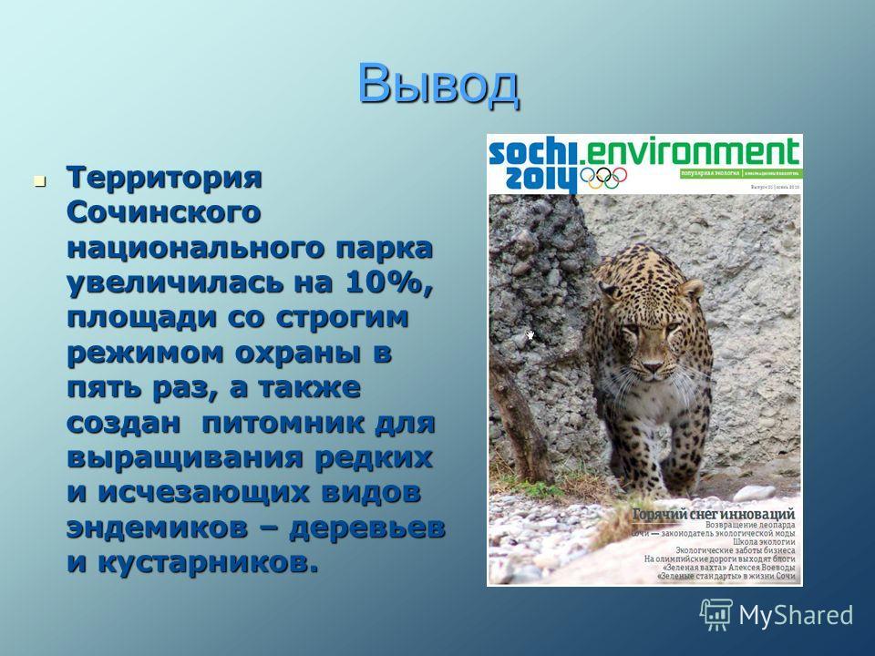 Вывод Территория Сочинского национального парка увеличилась на 10%, площади со строгим режимом охраны в пять раз, а также создан питомник для выращивания редких и исчезающих видов эндемиков – деревьев и кустарников. Территория Сочинского национальног