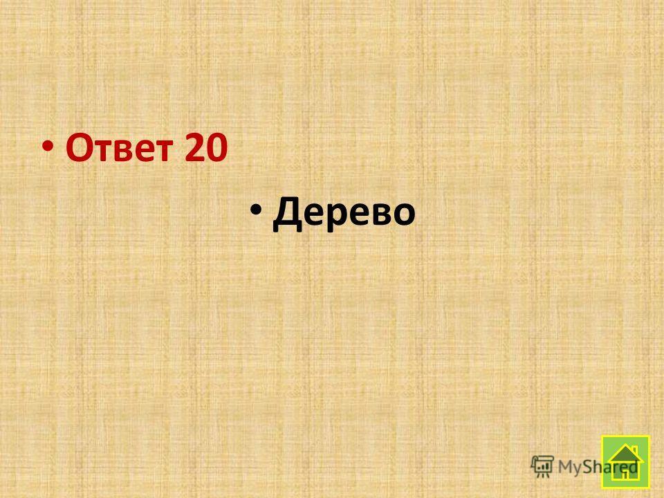 Ответ 20 Дерево