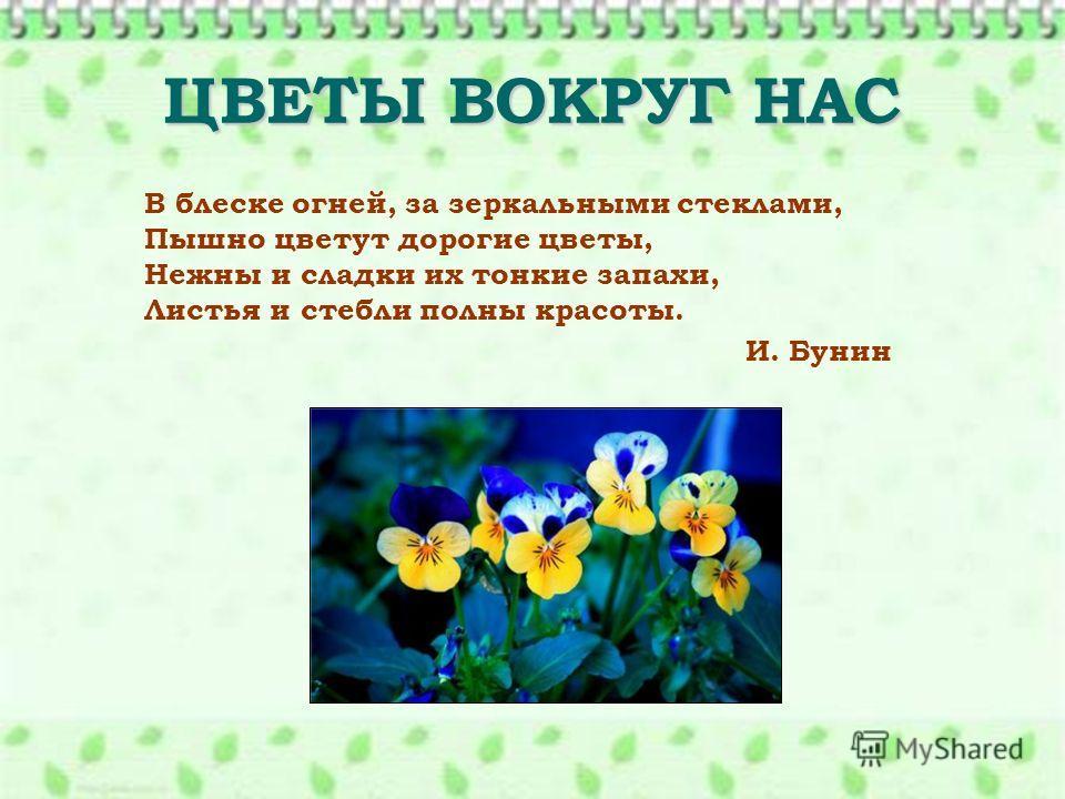 ЦВЕТЫ ВОКРУГ НАС В блеске огней, за зеркальными стеклами, Пышно цветут дорогие цветы, Нежны и сладки их тонкие запахи, Листья и стебли полны красоты. И. Бунин