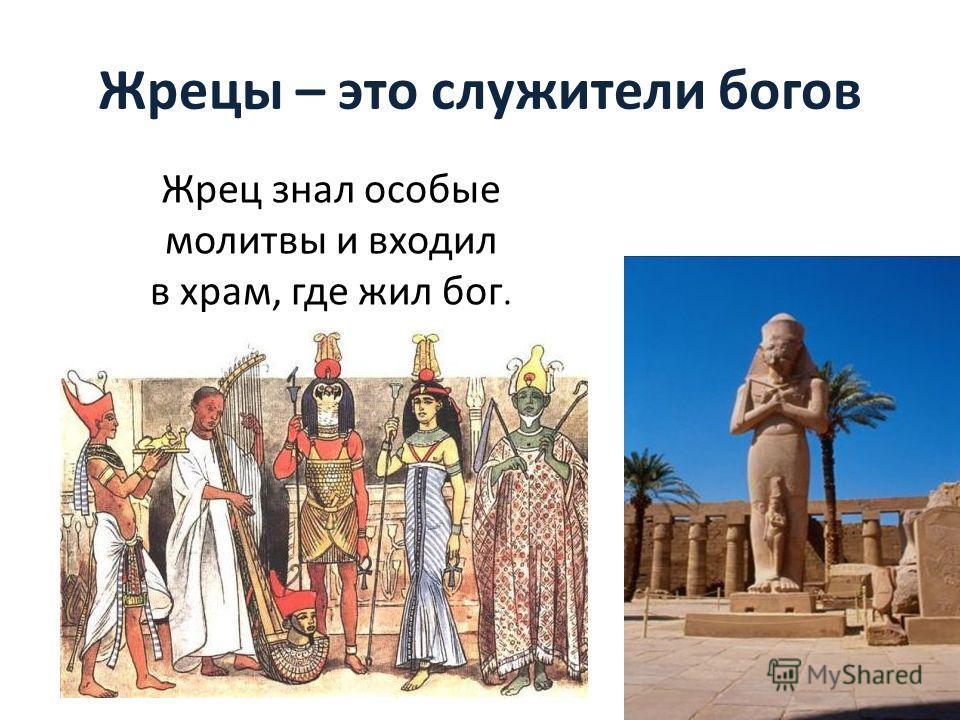 Жрецы – это служители богов Жрец знал особые молитвы и входил в храм, где жил бог.