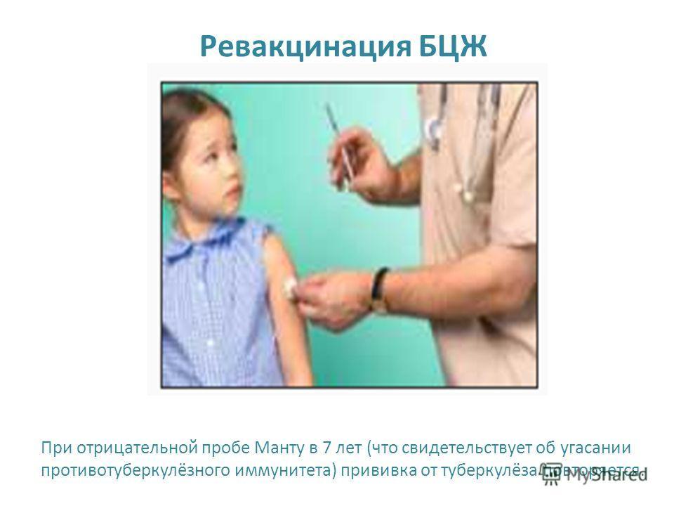 Ревакцинация БЦЖ При отрицательной пробе Манту в 7 лет (что свидетельствует об угасании противотуберкулёзного иммунитета) прививка от туберкулёза повторяется.