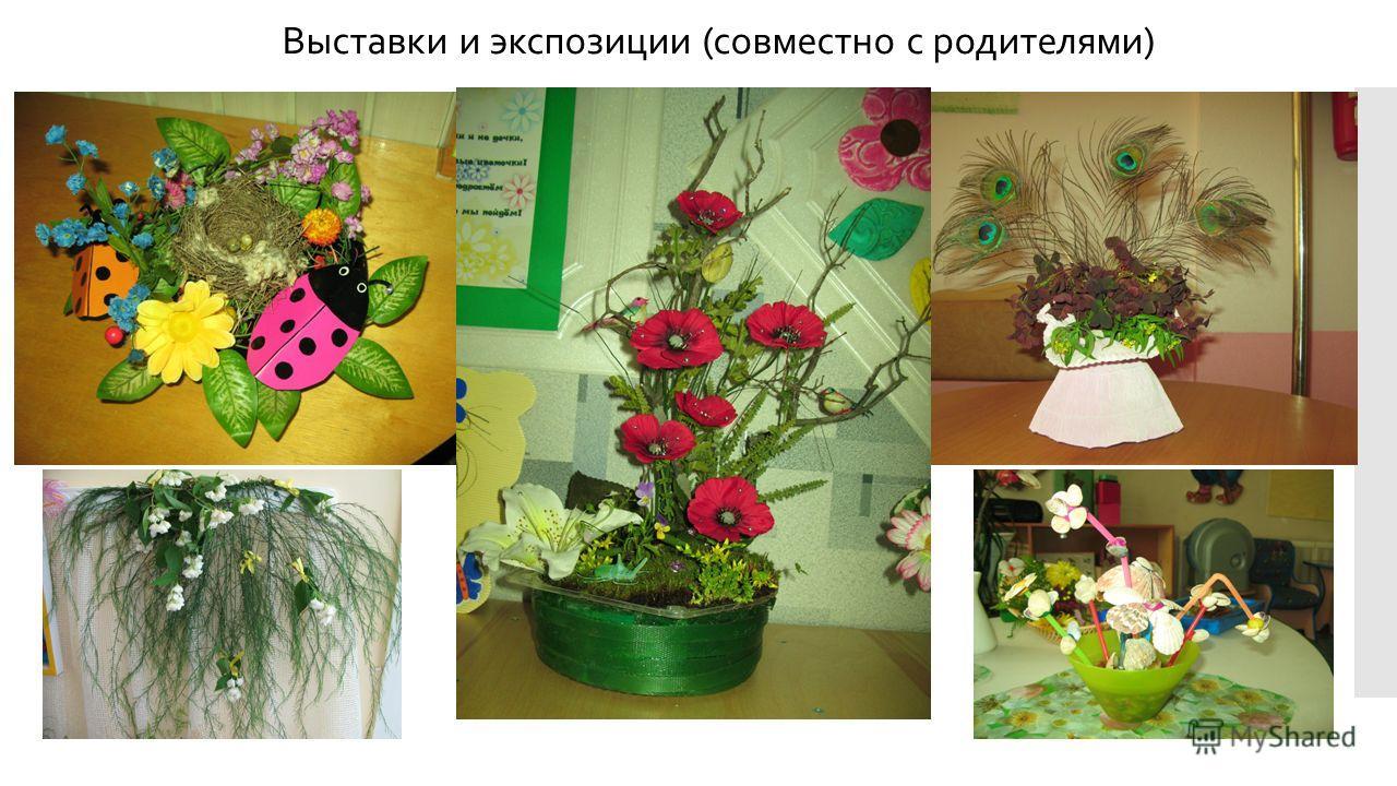 Выставки и экспозиции (совместно с родителями)