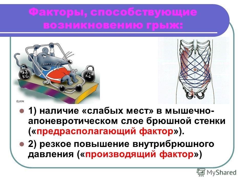 Факторы, способствующие возникновению грыж: 1) наличие «слабых мест» в мышечно- апоневротическом слое брюшной стенки («предрасполагающий фактор»). 2) резкое повышение внутрибрюшного давления («производящий фактор»)