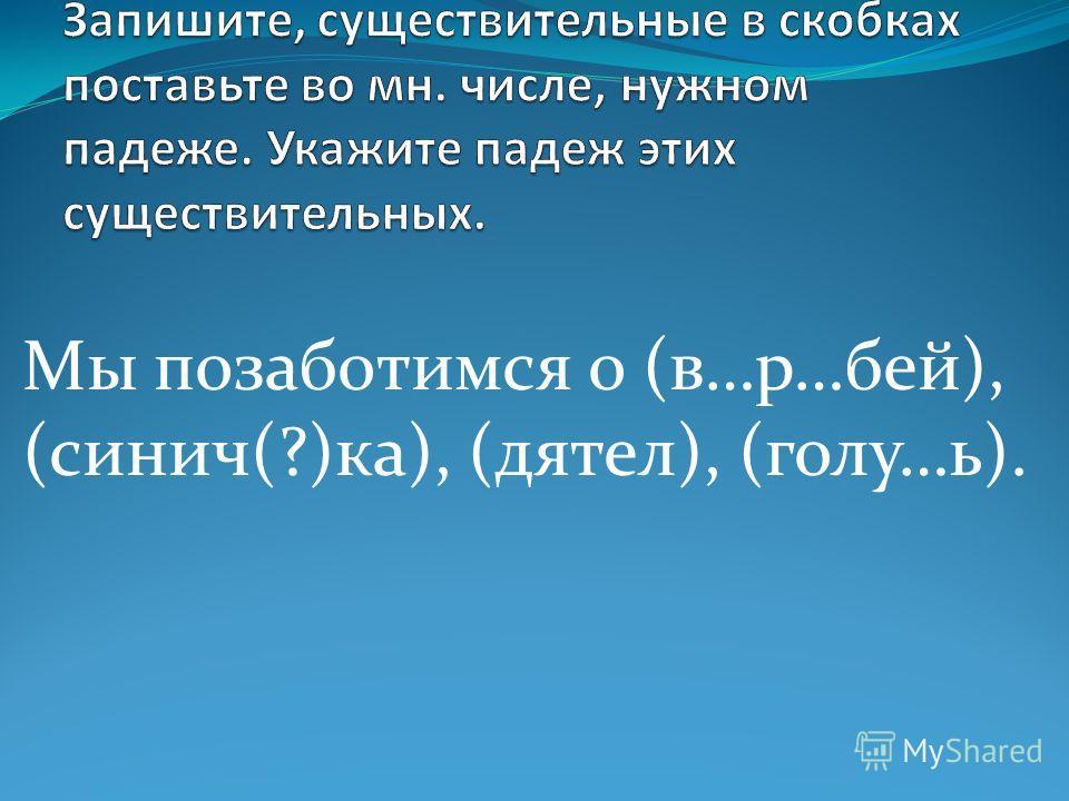 Мы позаботимся о (в…р…бей), (синих(?)ка), (дятел), (голу…ь).