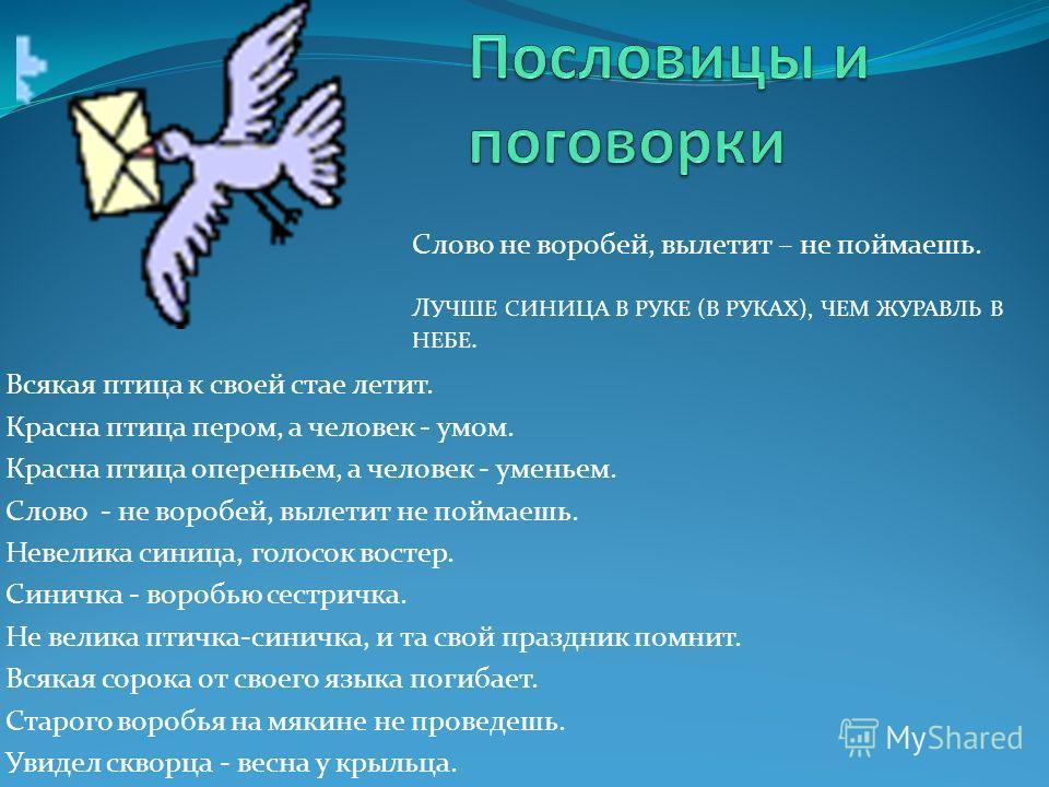 Всякая птица к своей стае летит. Красна птица пером, а человек - умом. Красна птица опереньем, а человек - уменьем. Слово - не воробей, вылетит не поймаешь. Невелика синица, голосок востер. Синичка - воробью сестричка. Не велика птичка-синихка, и та