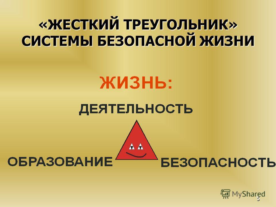 5 «ЖЕСТКИЙ ТРЕУГОЛЬНИК» СИСТЕМЫ БЕЗОПАСНОЙ ЖИЗНИ