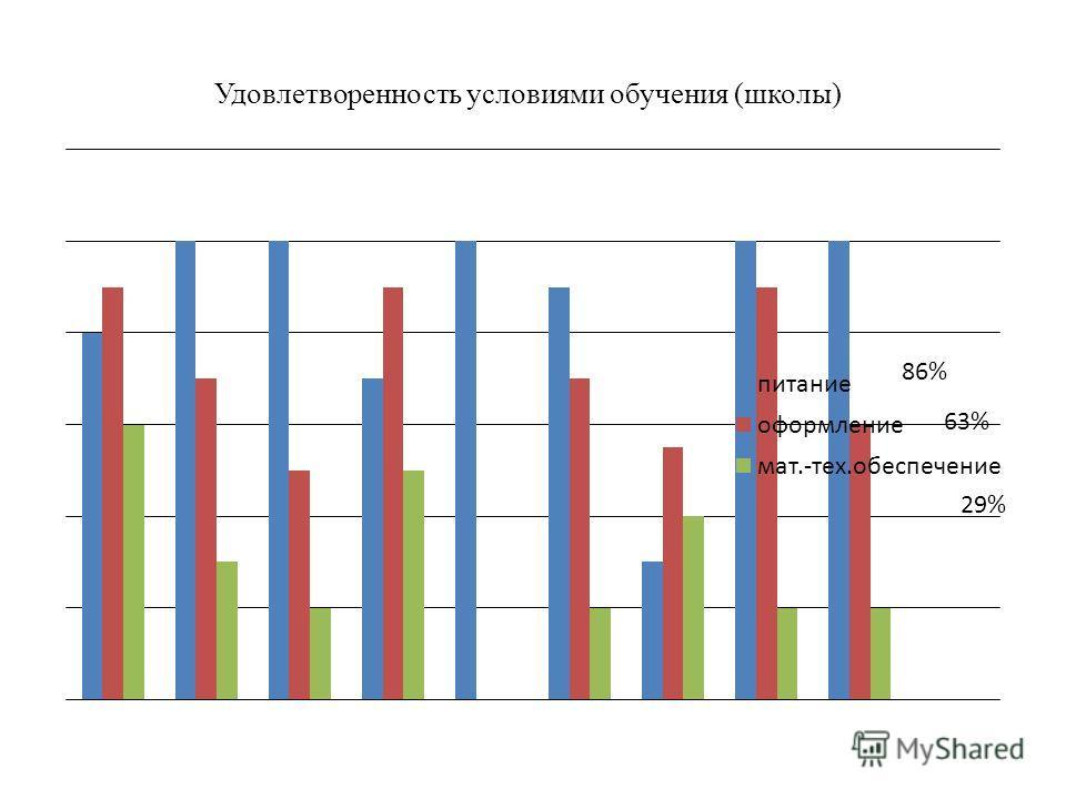 Удовлетворенность условиями обучения (школы) 29%