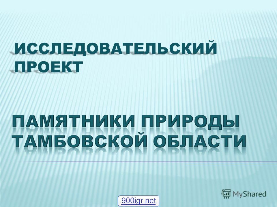 ИССЛЕДОВАТЕЛЬСКИЙ ПРОЕКТ 900igr.net