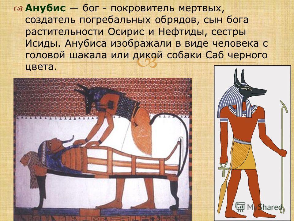 Анубис бог - покровитель мертвых, создатель погребальных обрядов, сын бога растительности Осирис и Нефтиды, сестры Исиды. Анубиса изображали в виде человека с головой шакала или дикой собаки Саб черного цвета.