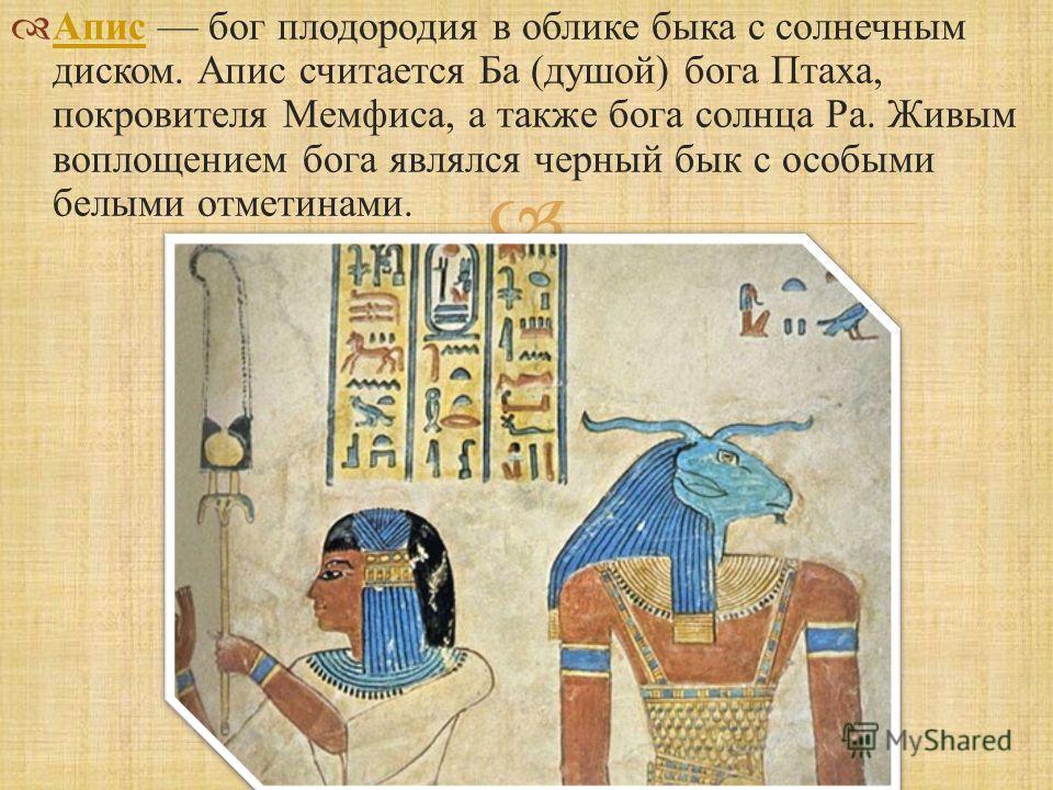 Апис бог плодородия в облике быка с солнечным диском. Апис считается Ба ( душой ) бога Птаха, покровителя Мемфиса, а также бога солнца Ра. Живым воплощением бога являлся черный бык с особыми белыми отметинами. Апис