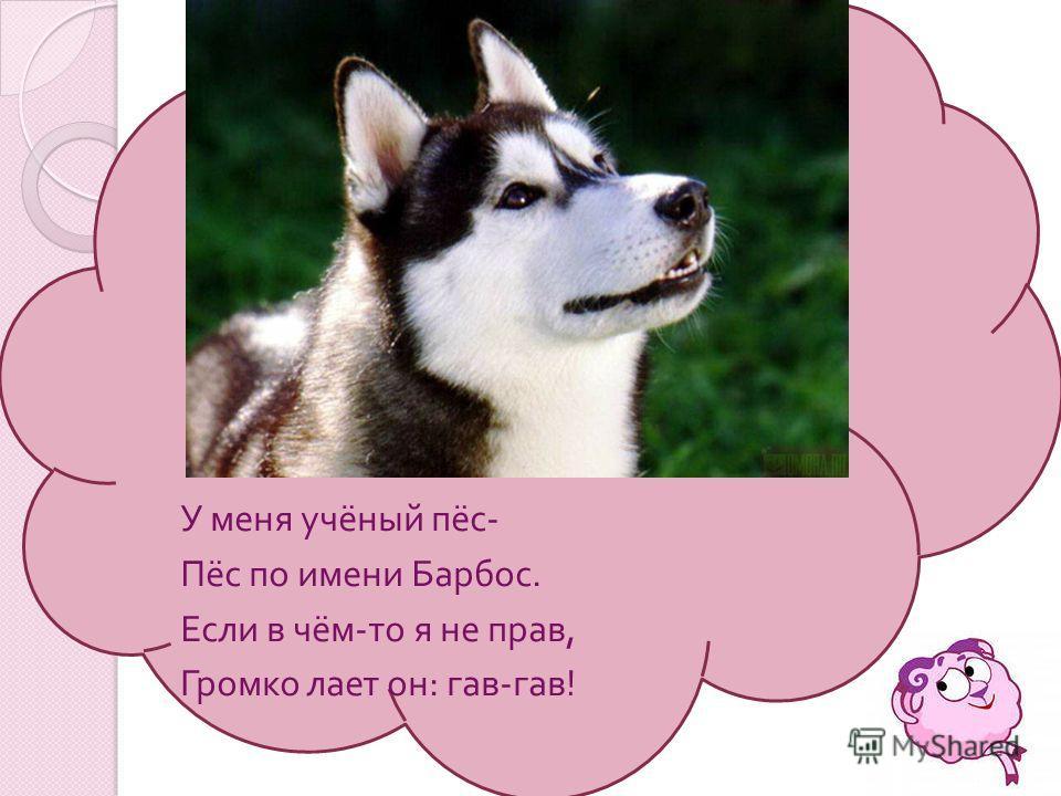 У меня учёный пёс - Пёс по имени Барбос. Если в чём - то я не прав, Громко лает он : гав - гав !
