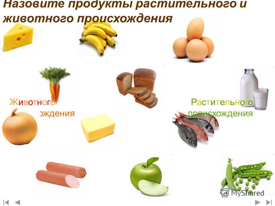 Назовите продукты растительного и животного происхождения Животного происхождения Растительного происхождения