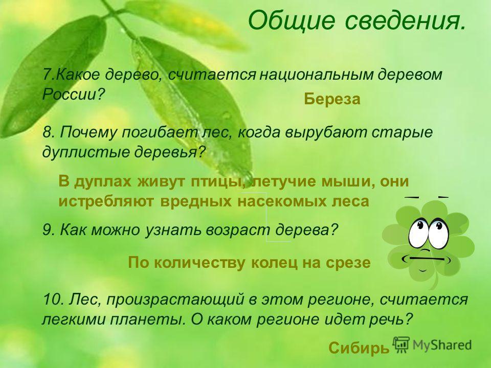 Общие сведения. 9. Как можно узнать возраст дерева? 7. Какое дерево, считается национальным деревом России? 8. Почему погибает лес, когда вырубают старые дуплистые деревья? 10. Лес, произрастающий в этом регионе, считается легкими планеты. О каком ре