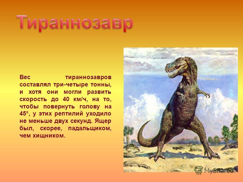 Вес тираннозавров составлял три-четыре тонны, и хотя они могли развить скорость до 40 км/ч, на то, чтобы повернуть голову на 45°, у этих рептилий уходило не меньше двух секунд. Ящер был, скорее, падальщиком, чем хищником.