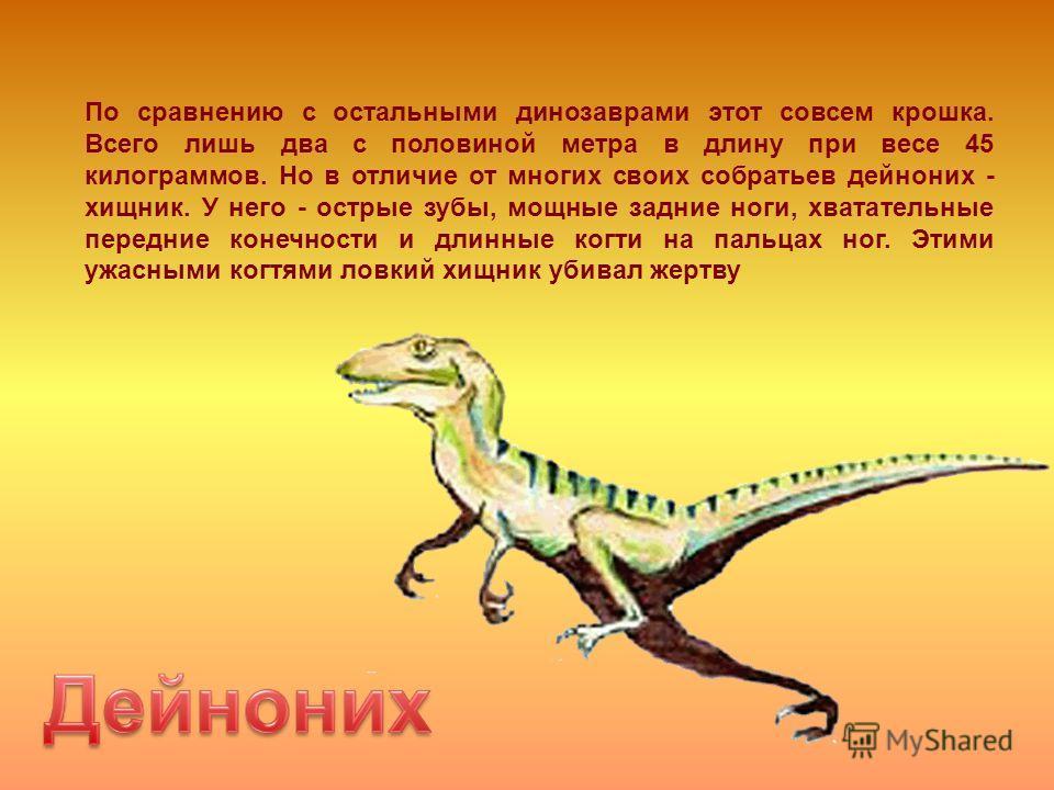 По сравнению с остальными динозаврами этот совсем крошка. Всего лишь два с половиной метра в длину при весе 45 килограммов. Но в отличие от многих своих собратьев дейноних - хищник. У него - острые зубы, мощные задние ноги, хватательные передние коне