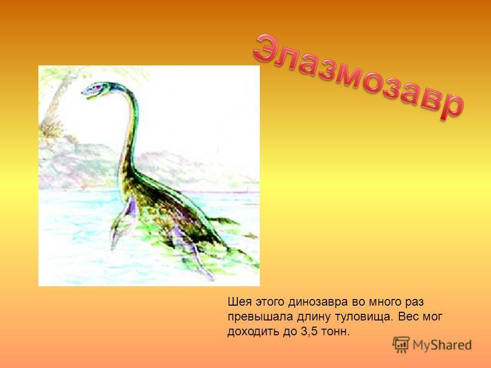 Шея этого динозавра во много раз превышала длину туловища. Вес мог доходить до 3,5 тонн.