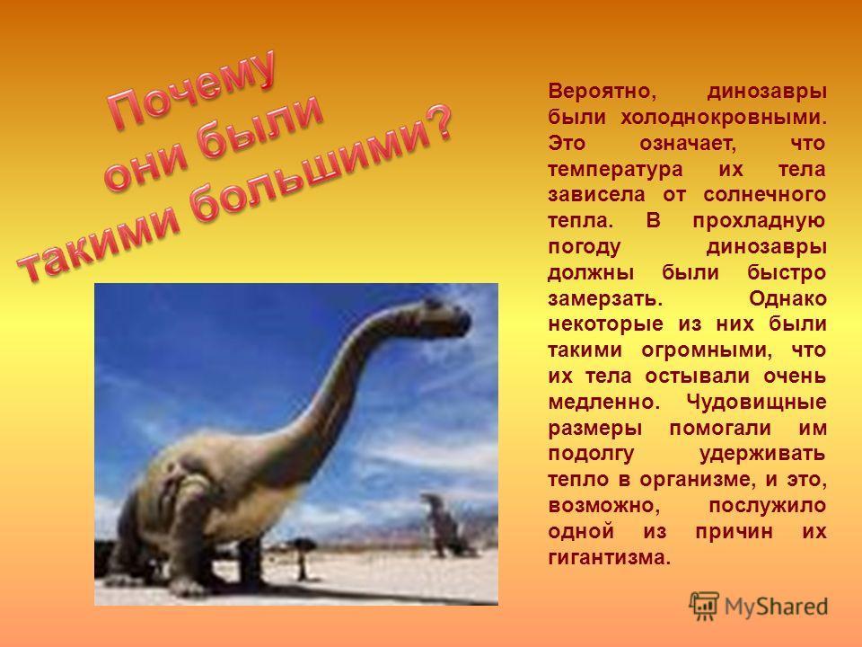 Вероятно, динозавры были холоднокровными. Это означает, что температура их тела зависела от солнечного тепла. В прохладную погоду динозавры должны были быстро замерзать. Однако некоторые из них были такими огромными, что их тела остывали очень медлен