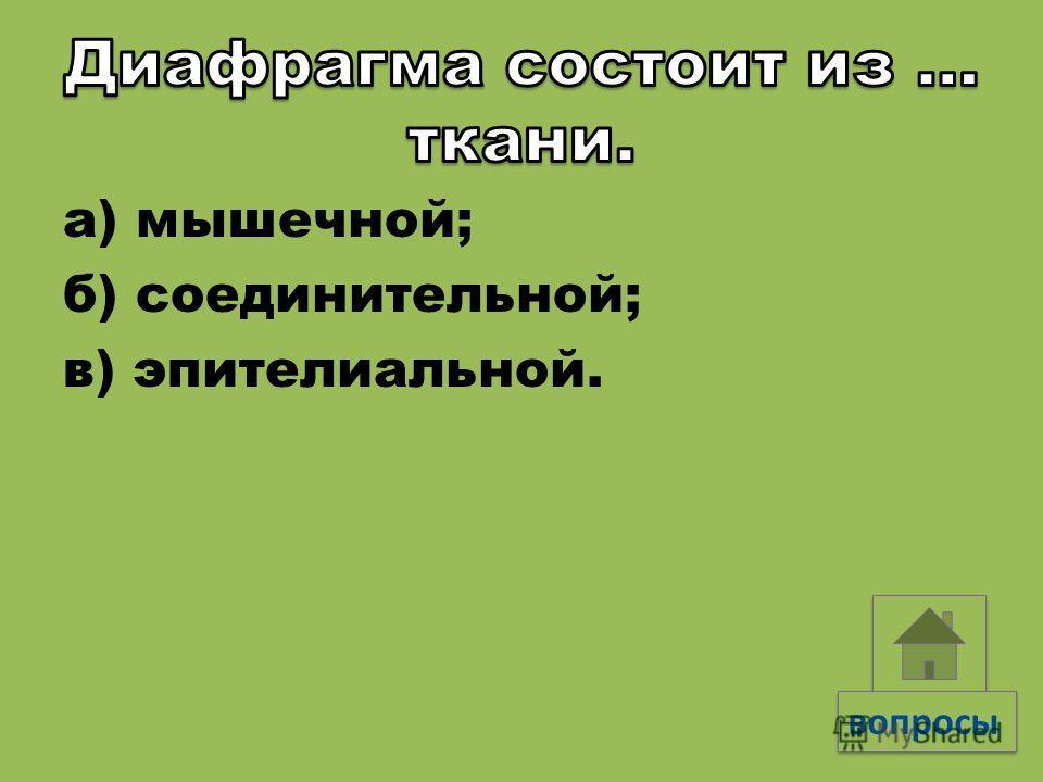 а) легочной плеврой; б) пристеночной плеврой; в) эпителиальной тканью.