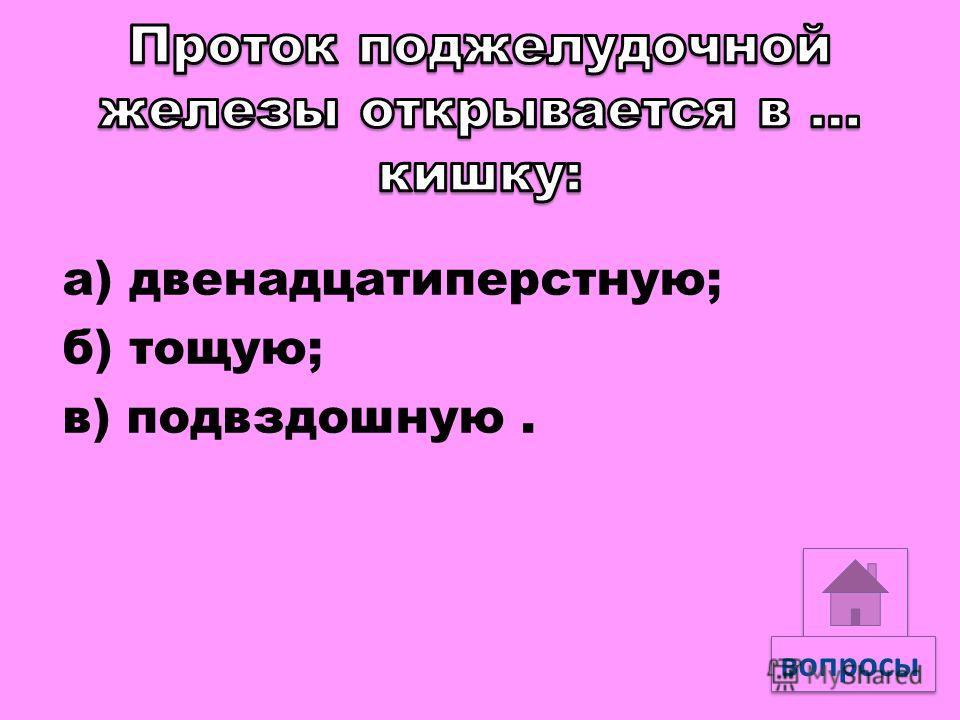 а) аминокислоты; б) глицерин и жирные кислоты; в) нуклеотиды. вопросы