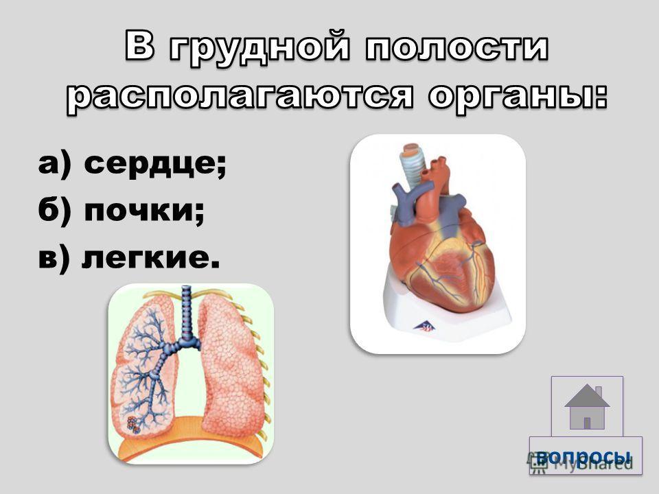 а) эпителиальной; б) соединительной; в) мышечной. вопросы