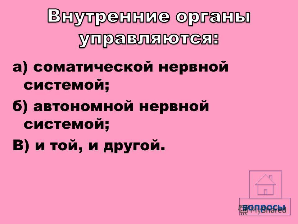 а) сердце; б) трахея; в) аорта. вопросы