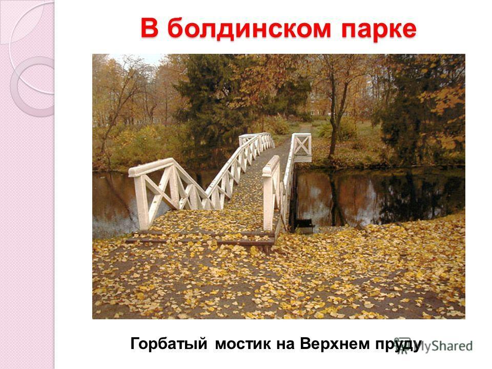 В болдинском парке Горбатый мостик на Верхнем пруду