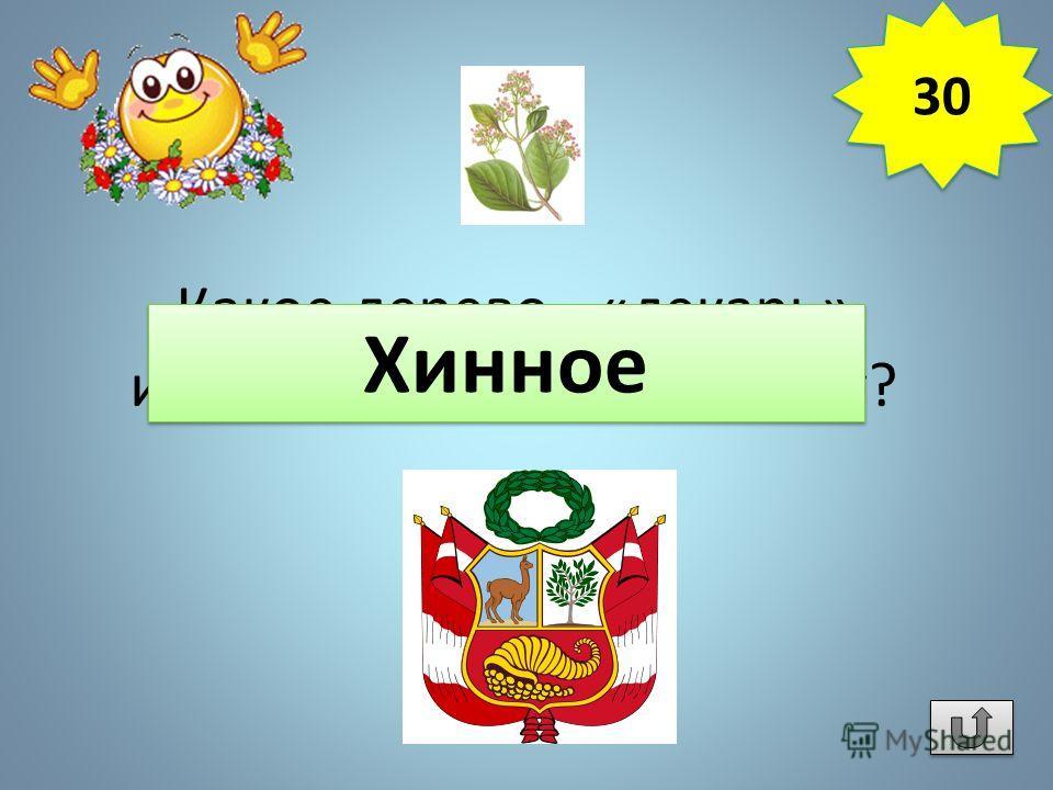 Какое дерево - «лекарь» изображено на гербе Перу? Хинное 30