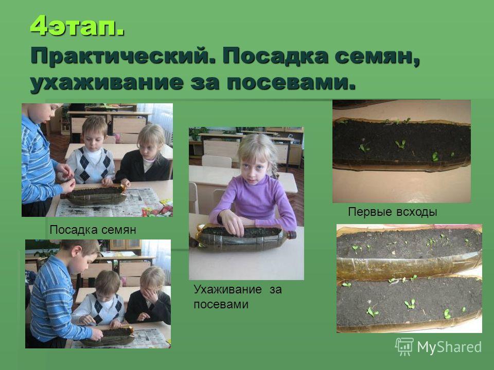 4 этап. Практический. Посадка семян, ухаживание за посевами. Первые всходы Посадка семян Ухаживание за посевами