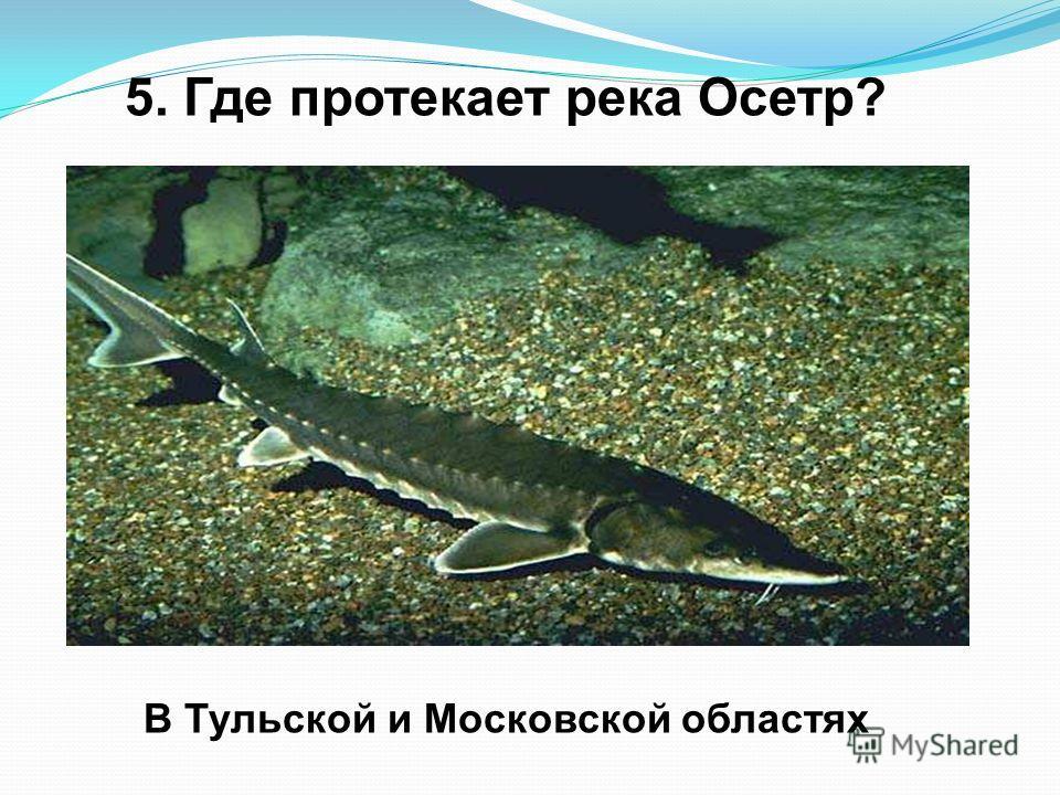 5. Где протекает река Осетр? В Тульской и Московской областях