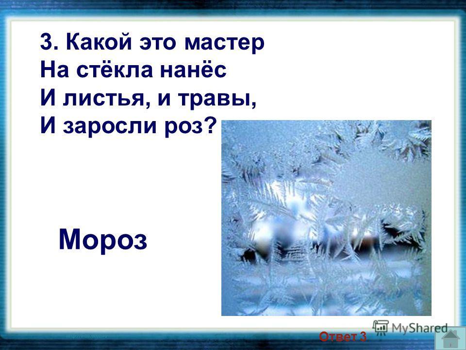 Мороз 3. Какой это мастер На стёкла нанёс И листья, и травы, И заросли роз? Ответ 3
