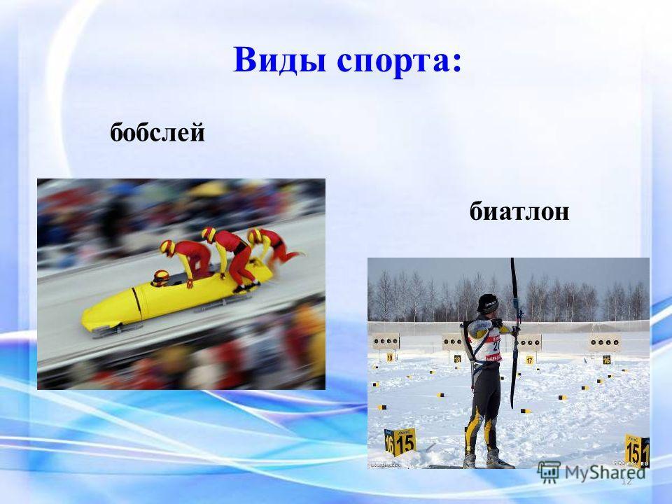 Виды спорта: бобслей биатлон 12
