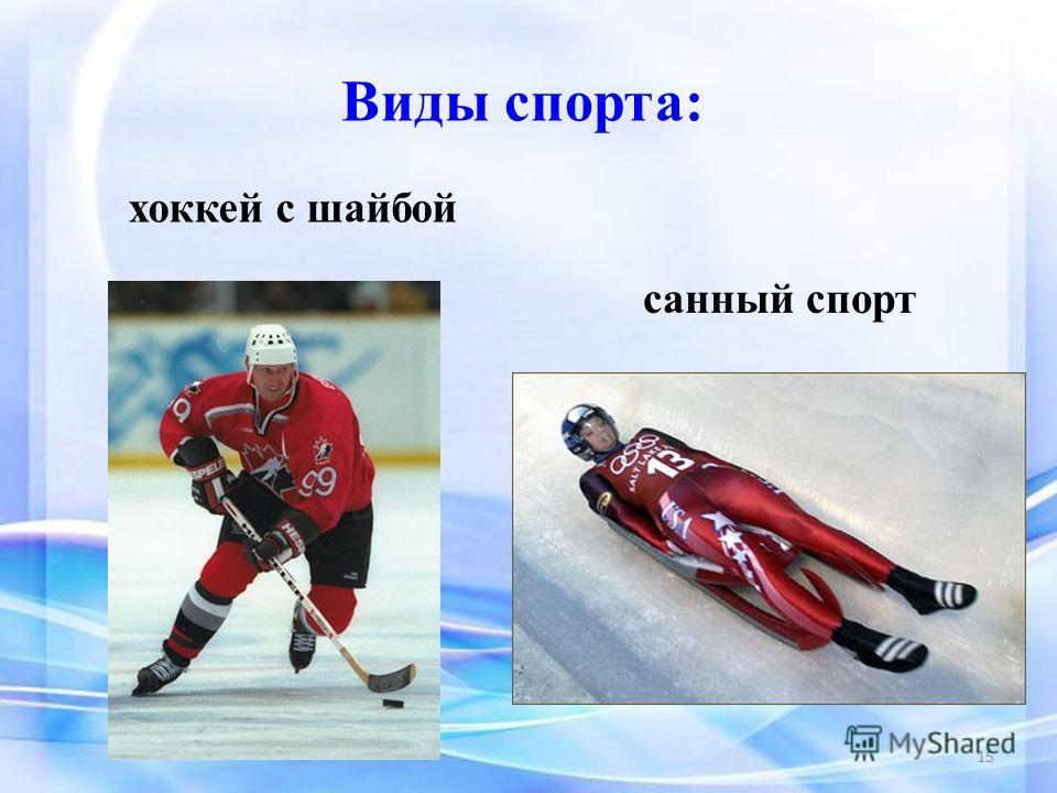 Виды спорта: санный спорт хоккей с шайбой 15