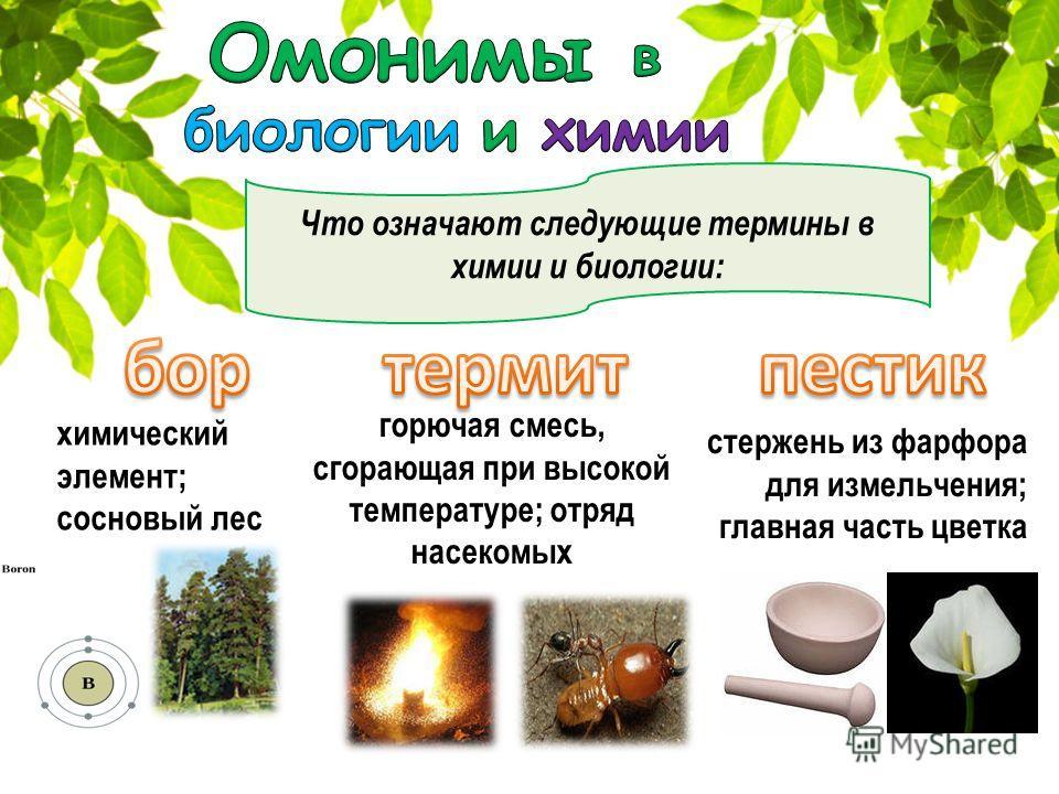 Что означают следующие термины в химии и биологии: химический элемент; сосновый лес горючая смесь, сгорающая при высокой температуре; отряд насекомых стержень из фарфора для измельчения; главная часть цветка