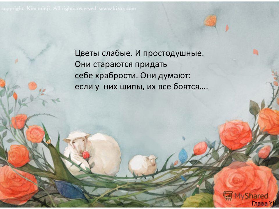 Глава YII Цветы слабые. И простодушные. Они стараются придать себе храбрости. Они думают: если у них шипы, их все боятся….