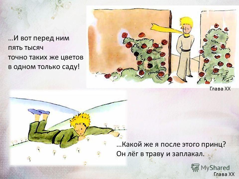 …И вот перед ним пять тысяч точно таких же цветов в одном только саду! Глава XX …Какой же я после этого принц? Он лёг в траву и заплакал. Глава XX
