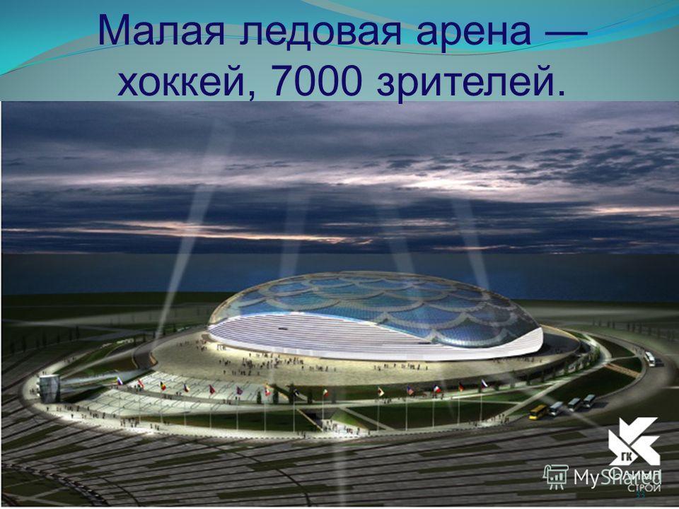 Малая ледовая арена хоккей, 7000 зрителей. 33