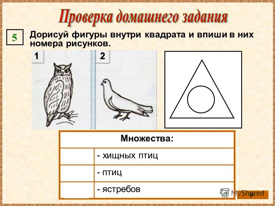 Дорисуй фигуры внутри квадрата и впиши в них номера рисунков. 5 Множества: - хищных птиц - птиц - ястребов 21