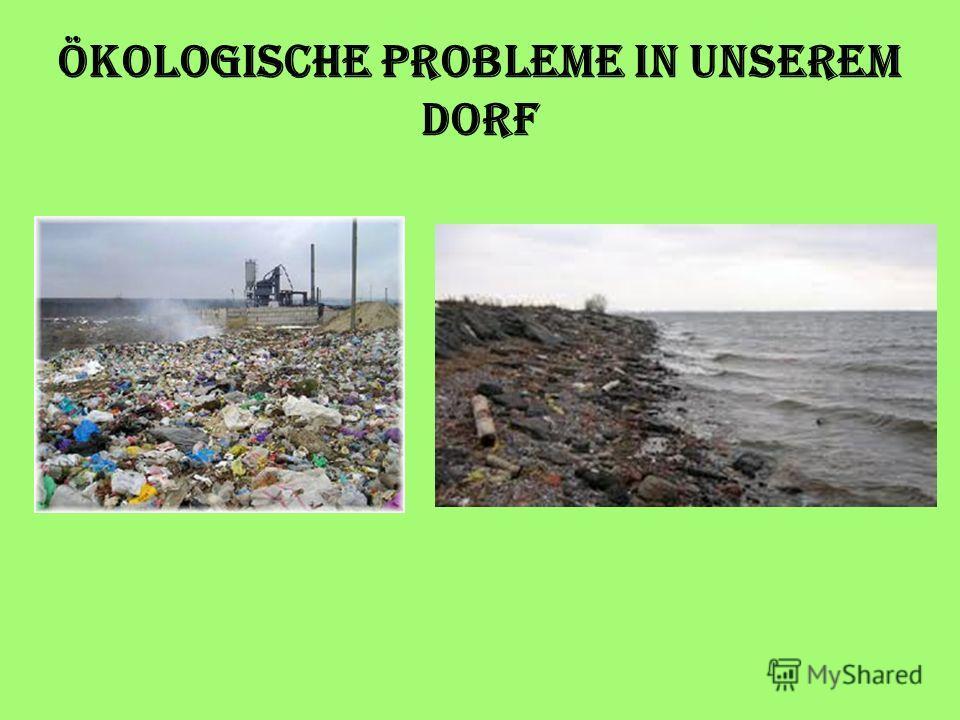 Ökologische Probleme in unserem Dorf