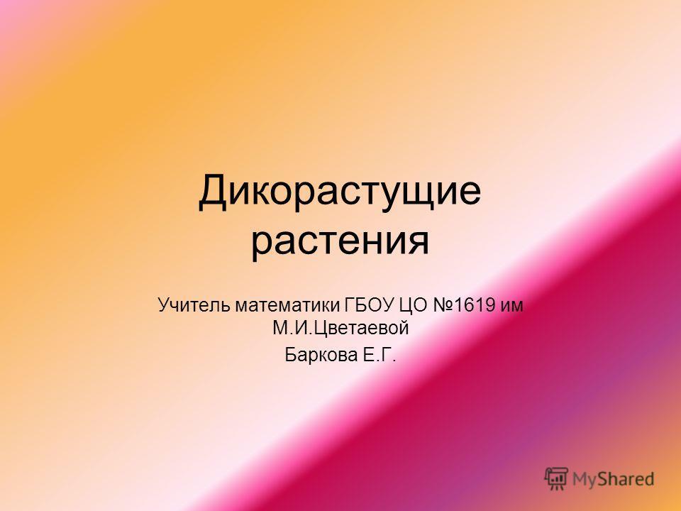 Дикорастущие растения Учитель математики ГБОУ ЦО 1619 им М.И.Цветаевой Баркова Е.Г.
