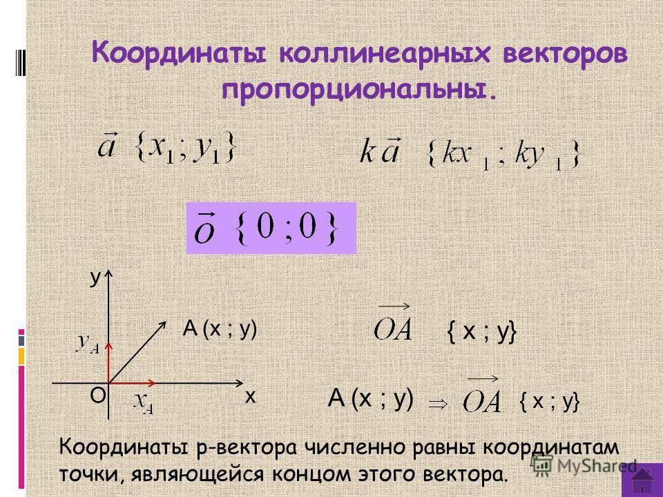 Координаты коллинеарныех векторов пропорциональны. y x A (x ; y) O { х ; y} Координаты p-вектора численно равны координатам точки, являющейся концом этого вектора. A (x ; y) { х ; y}