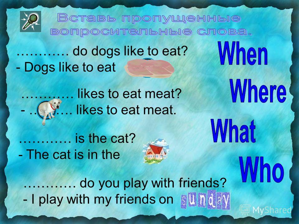 ………… do dogs like to eat? - Dogs like to eat ………. ………… likes to eat meat? - ………. likes to eat meat. ………… is the cat? - The cat is in the ……. ………… do you play with friends? - I play with my friends on ……….