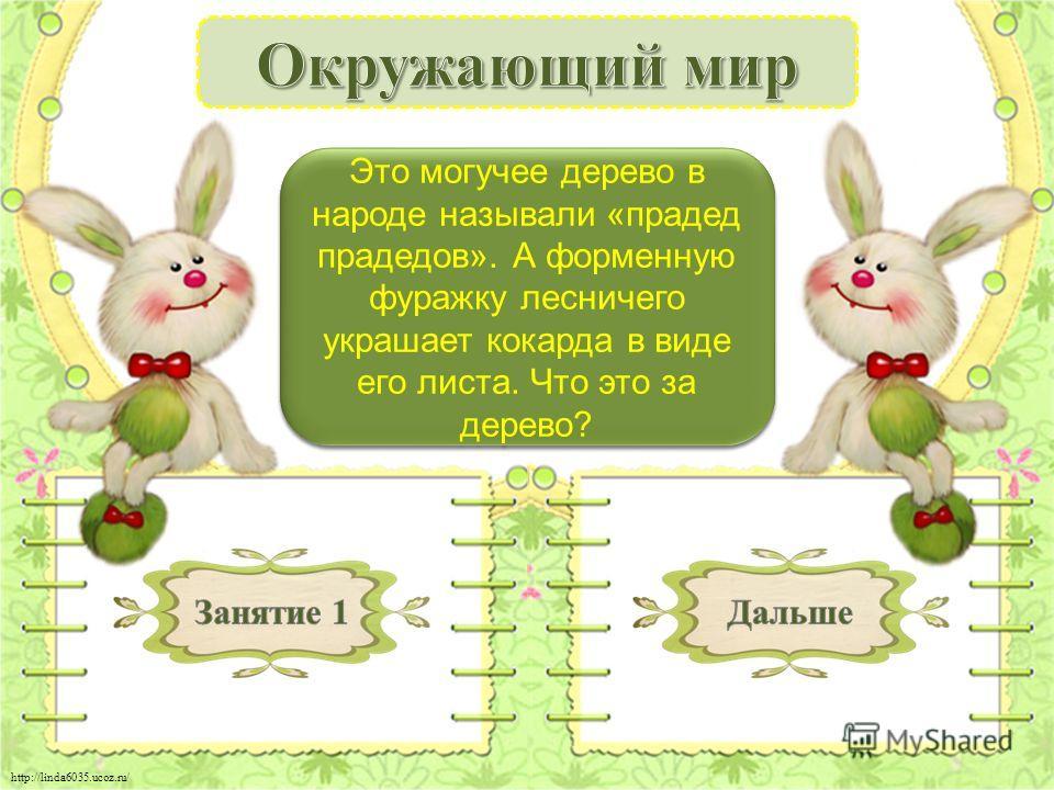 http://linda6035.ucoz.ru/ Дуб - 2 б. Это могучее дерево в народе называли «прадед прадедов». А форменную фуражку лесничего украшает кокарда в виде его листа. Что это за дерево?