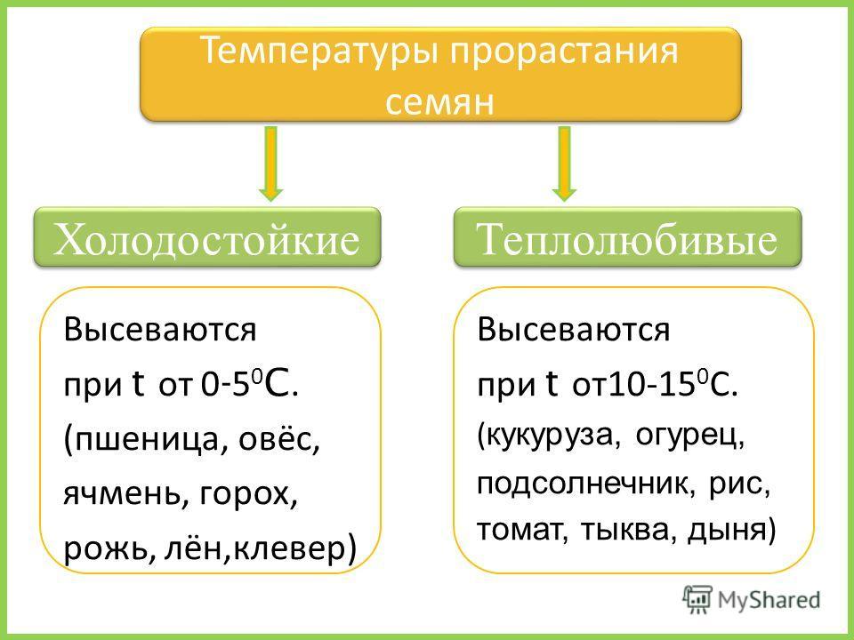 Высеваются при t от 0 - 5 0 C. (пшеница, овёс, ячмень, горох, рожь, лён,клевер) Температуры прорастания семян Теплолюбивые Холодостойкие Высеваются при t от 10-15 0 С. ( кукуруза, огурец, подсолнечник, рис, томат, тыква, дыня )