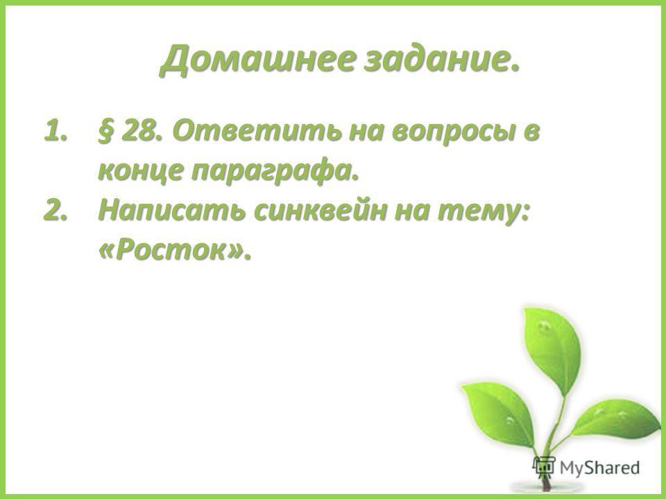 Домашнее задание. 1.§ 28. Ответить на вопросы в конце параграфа. 2. Написать синквейн на тему: «Росток».