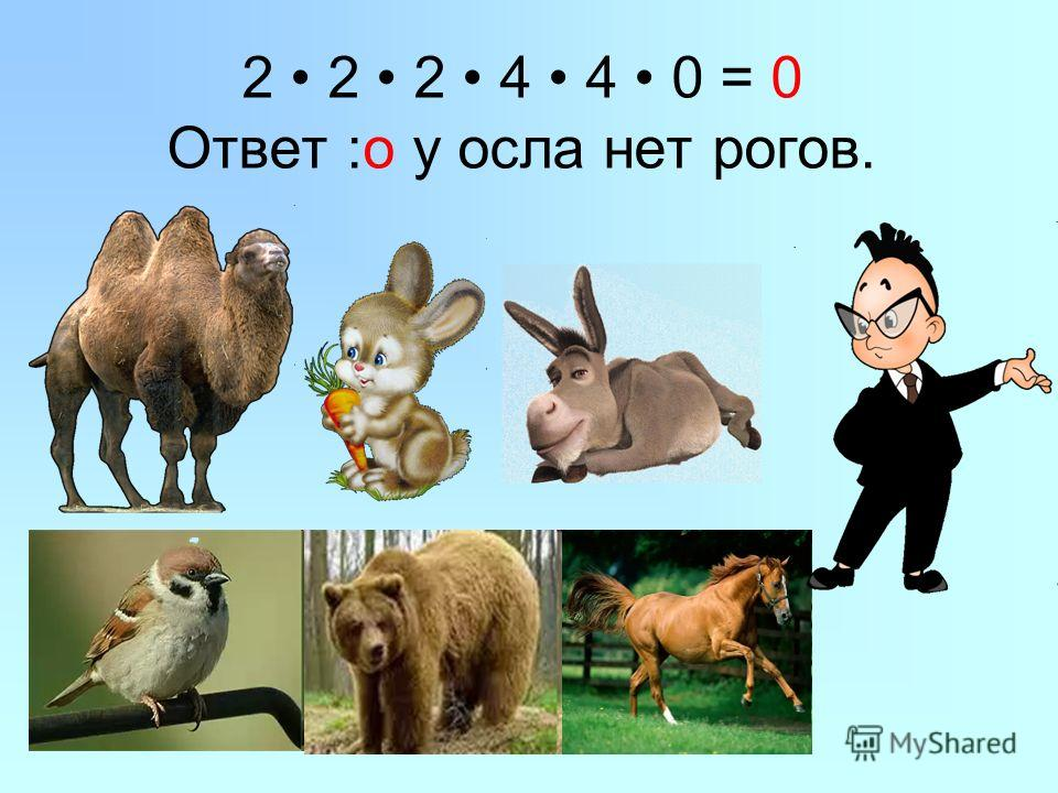 2 2 2 4 4 0 = 0 Ответ :о у осла нет рогов.