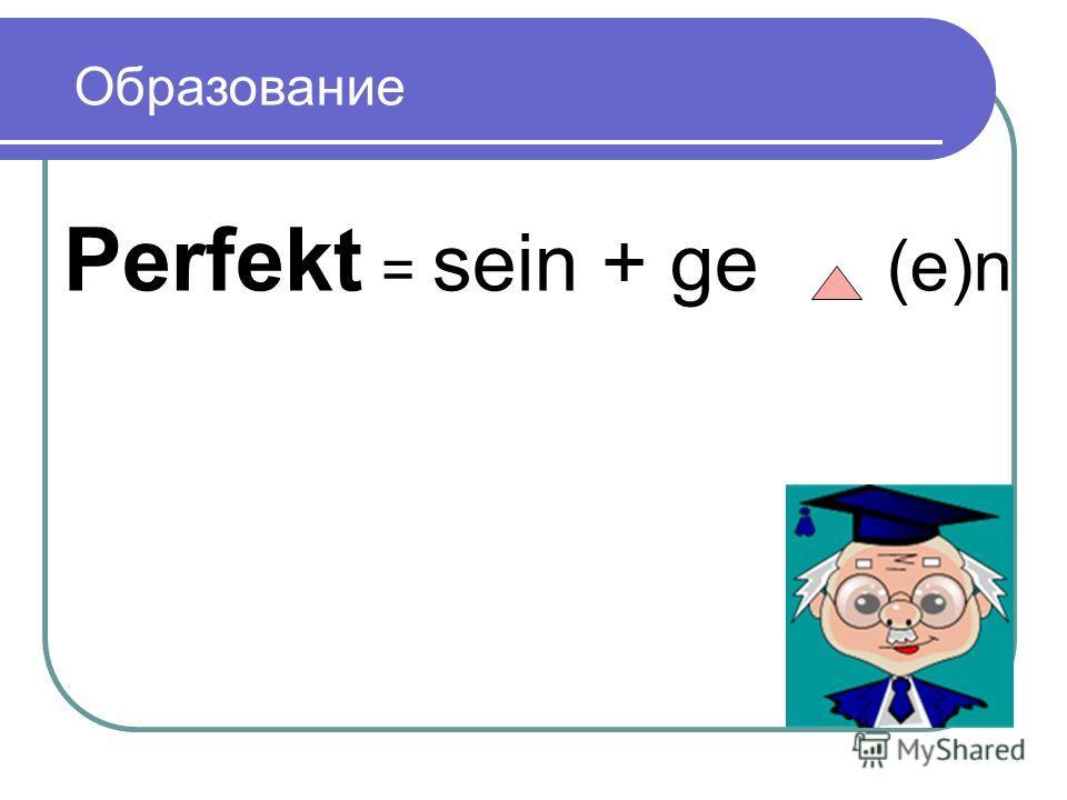 Perfekt = sein + ge (e)n Образование