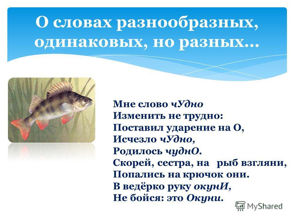 Скорей сестра на рыб взгляни попались на крючок они