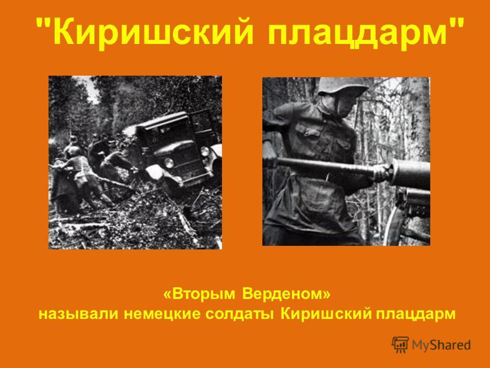 Киришский плацдарм «Вторым Верденом» называли немецкие солдаты Киришский плацдарм
